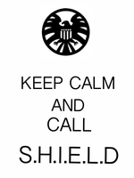 Keep Calm S.H.E.I.L.D by Mr-Saxon