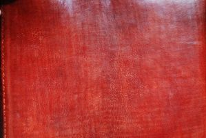 Leather Texture 1 by GuruMedit