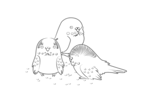 Budgies_Lineart by Nashiil