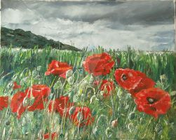 Cottington's Poppies 1 - Stormy Poppies by AmandaBates