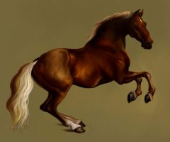 Whistlejacket II by Elsouille