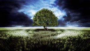 SengiraDesign | Tree with a thousand words by SengiraDesgin