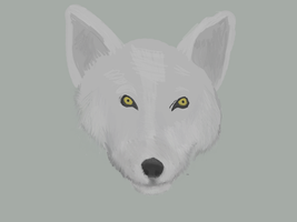Wolf Work In Progress by coolsarahkry