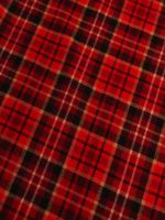 Plaid Red by IntroStock
