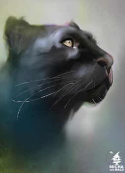 Bagheera by Micha-vom-Wald