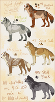 Wolf Adoptables Batch #1 [CLOSED] by WolvenBird