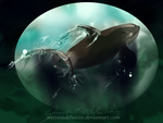 Antarctic Shadow Killer Whale by WeisseEdelweiss