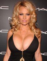 Pamela Anderson and huger bras by vill8