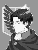 . Rivaille . by UsagiNoYume