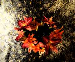 Flowers on Polished Cotton III by Atlantagirl