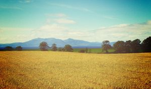 Fields and Isle of Arran 2 by martinemes