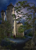 castle of insane - waiting by houk