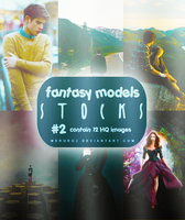 Fantasy Models Stocks [request by Dee] #2 by meroro2