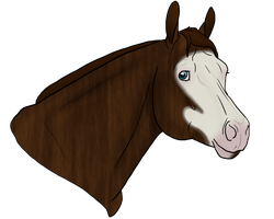 *Premium Horse*Pocketbook-The WD by Rising-High-Ranch