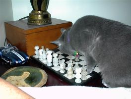 Newton Playing Chess by 914four