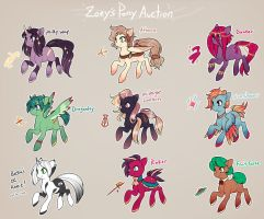 MLP: Pony Auction! [CLOSED] by Zilleniose