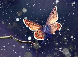 SNOW by lisans