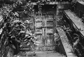 Old Door by avotius