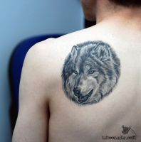 wolf by tattoozone