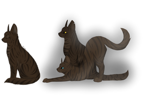 Brambleclaw, Hawkfrost and Tigerstar by KZcat