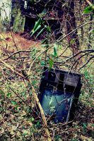 The Nature Channel by AcceptedOutcast
