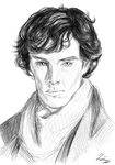 One layer speedpaint: Benedict Cumberbatch by Salu-chan