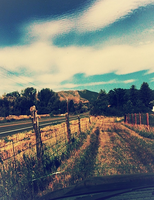 Country Roads... Take me Home... by 2StrokeChic