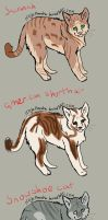 Kitteh adoptables by NinjaPancake