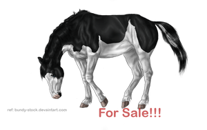 For Sale !!! by BRls-love-is-MY-Live