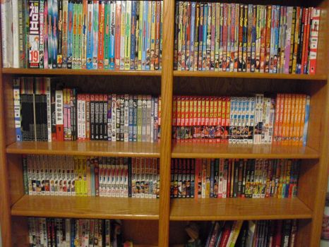 My Manga Collection V.3 by Llewxam888