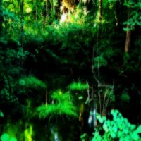 Ghoul Swamp by DasGhul