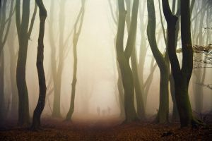 Stragglers by Northstar76