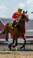 Horse Racing 528 by JullelinPhotography
