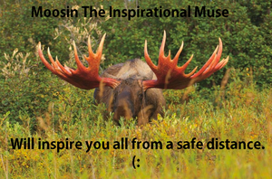 Inspirational Moose by Dysfunctional-H0rr0r