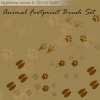 Free Animal Footprints Brush Set by Nighttime-Wishes