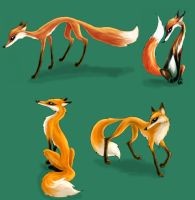 foxes by djaax