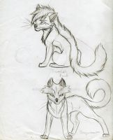 Warrior Cats Set 16 by KasaraWolf