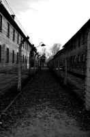 Auschwitz I by Disintegrated8