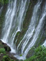 waterfall2 by ibartley