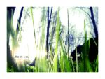 Grass by RockLou