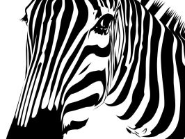 ..and stripes.wallpaper.1 by SunIsRising