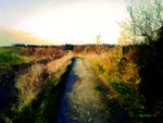 The Darnley Trail At Jeskyns Country Park by Nigel-Hirst