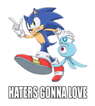 HATERS GONNA LOVE by ProfessorZolo