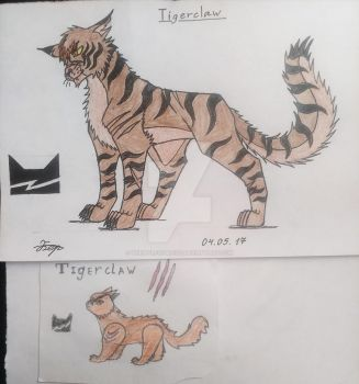 Before and after#2: Tigerclaw by thewolfofblood