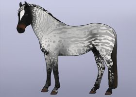 :: natural equine design :: 9 :: SOLD by KamikazeOverMe