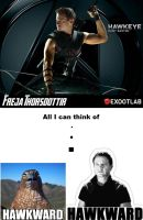My ''Which Avenger are you?'' result by FrostFoal
