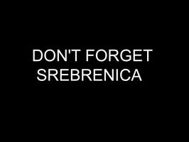 Never Forget Srebrenica by Nerco
