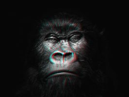Kong 3-D conversion by MVRamsey