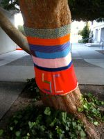 Sweater for a Tree 1 by MsKnitsAlot