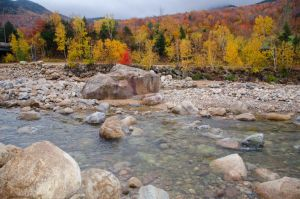 White Mountains  Fall Foliage  145 by FairieGoodMother
